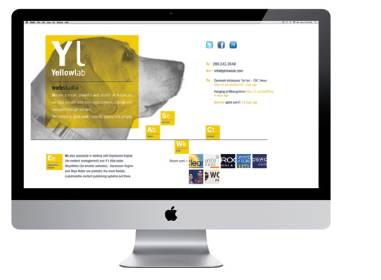 YELLOW LAB WEBSITE